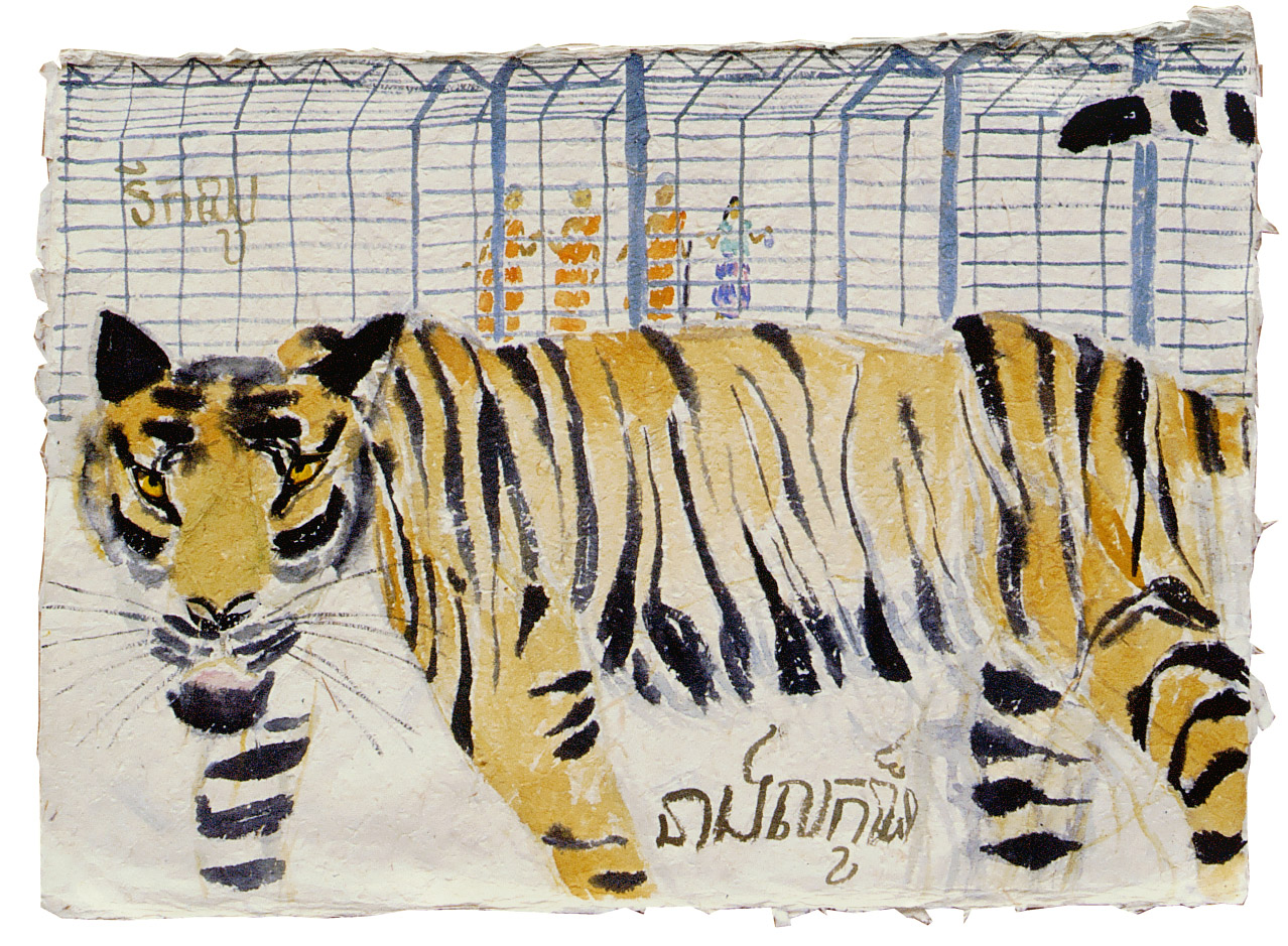 Kampuchia--Lian-Tiger-from-Kompot-zoo